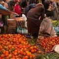 grand sud marocain (15)