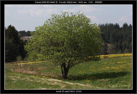2011_04_25_1__10_