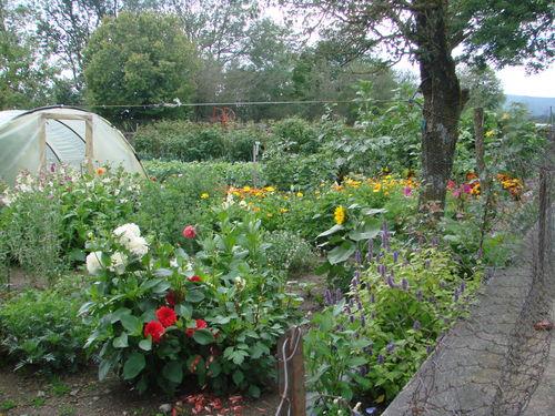 2008 08 17 Mon jardin