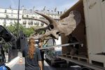 21641052_FRANCE_PALEONTOLOGY_DINOSAUR_EXHIBITION_AUCTION_FRANCE_PALEONTOLOGY_DINOSAUR_EXHIBITION_AUCTION