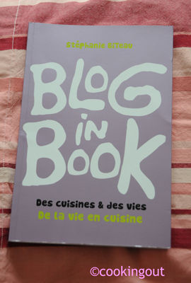 blog_in_book