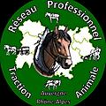 Biomécanique du cheval au travail - réparata - aura