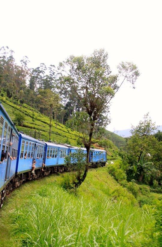 Quai n°3 le train pour Ella… SRI LANKA (3)