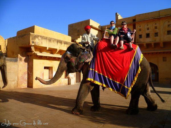 Sur l elephant
