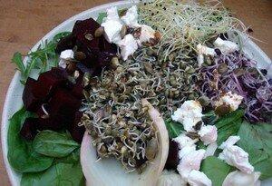 salade_graines2