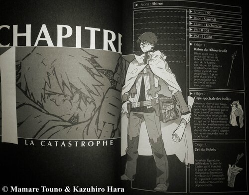 LOG Horizon, tome 01, Mamare Touno & Kazuhiro Hara Ofelbe éditions light novel scan 01
