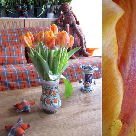 tulipes_oranges