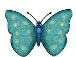 papillon_vole