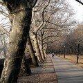 Riverside Park (mars 07)