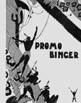 77_Binger_PROMO_copie