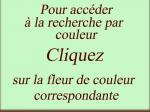 AccèsCouleur00