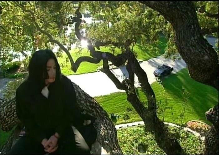 MJ giving tree platform