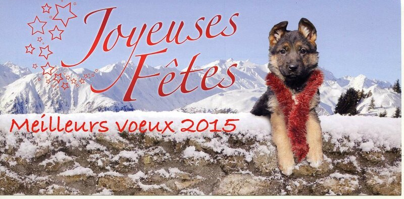 voeux an 2015