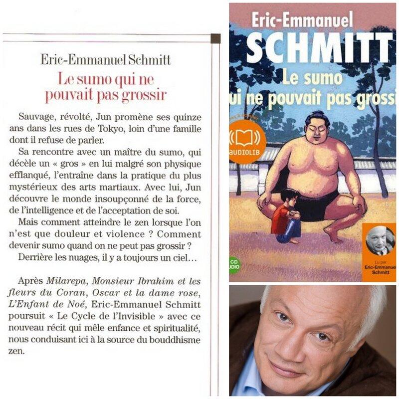 Eric-Emmanuel Schmitt - 2009 - Le sumo qui ne pouvait pas grossir