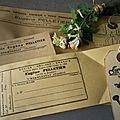 Anciennes pochettes etiquettes grains = graines = engrais cote botanique etiquette papier kraft