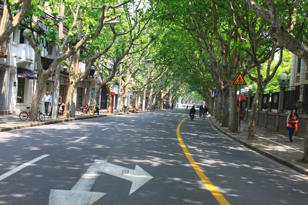 Changle Road (2)