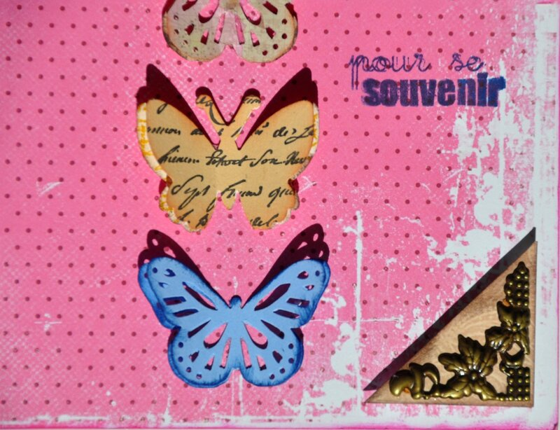 5-coin papillons