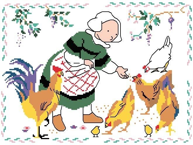 bretagne becassine poules grille pt