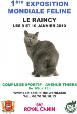 affiche_expo_chat