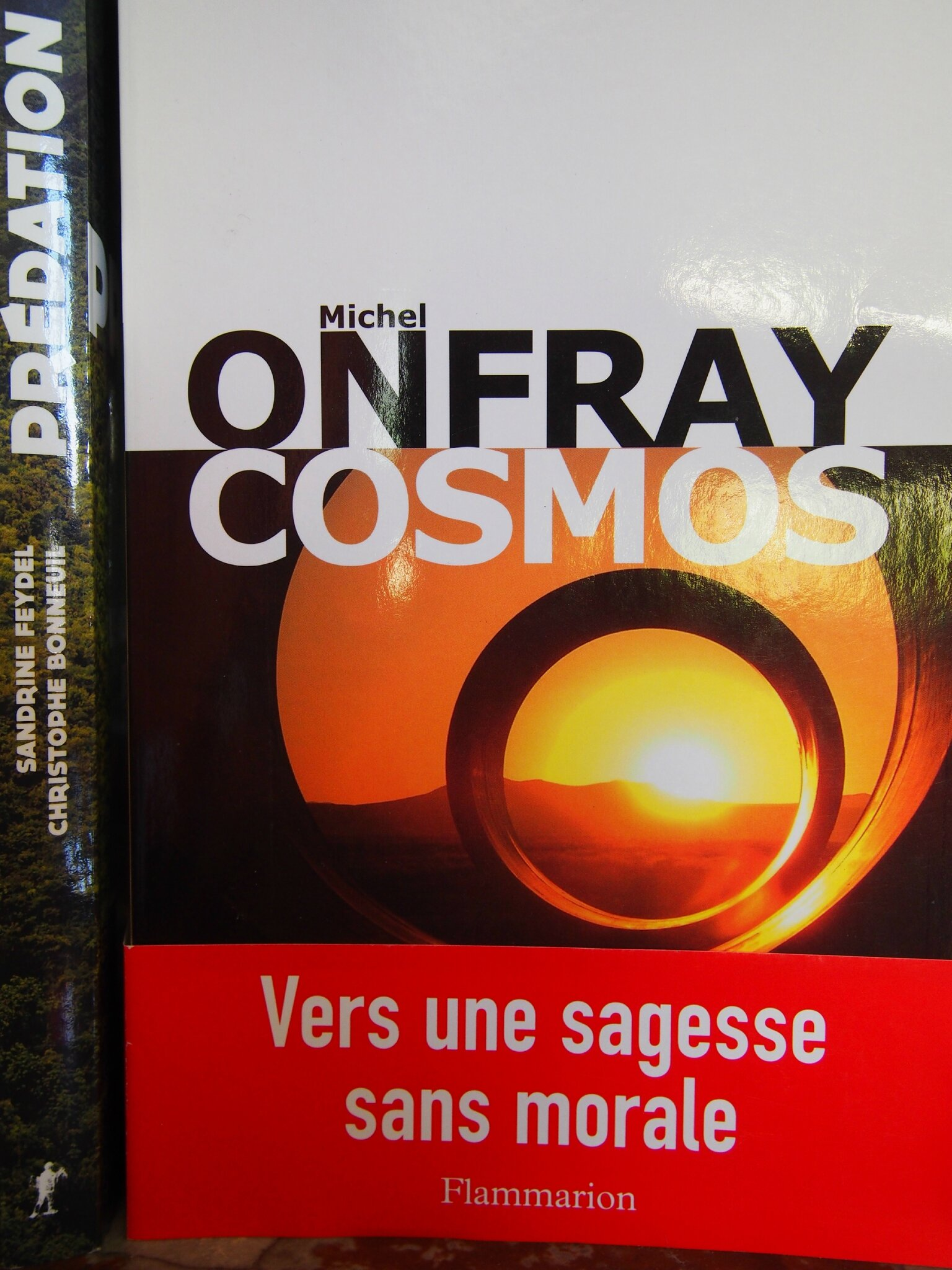 "Michel ONFRAY : ""Cosmos"""