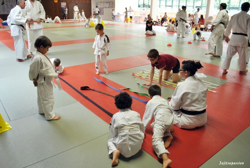 ballan judo club 279