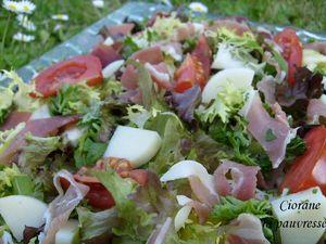 salade_herbe_1