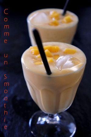 Yaourt glacé mangue gingembre (6)