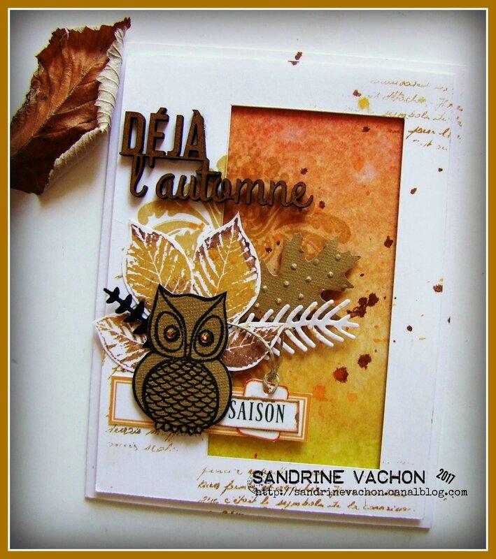 Sandrine VACHON défi 503 sept (2)