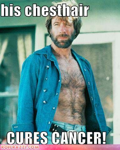 chuck_norris_his_chesthair_cures_cancer