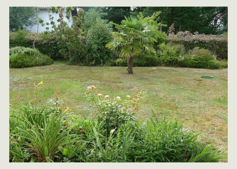 jardin08151