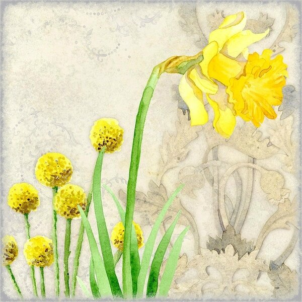 the-promise-of-spring-daffodil-audrey-jeanne-roberts