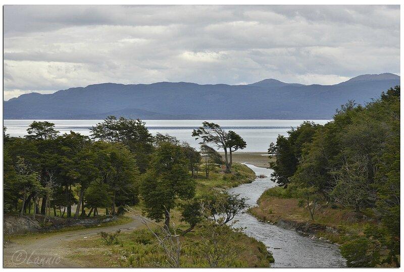 _Argentine_210_Ushuaia_ruisseau