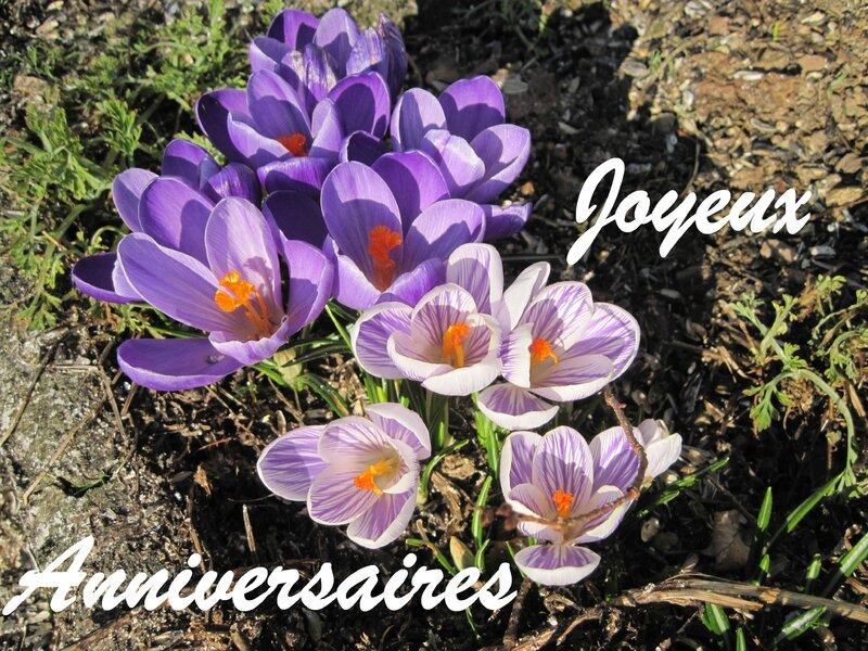 Fleurs avril 2016