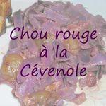 chou_rouge_c_venole