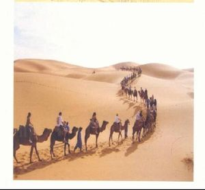 2129219-Tuaregs_guiding_tourists_into_the_Tenere_desert_Niger