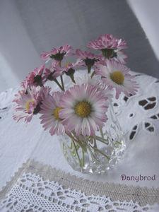 bonheur_de_mai5