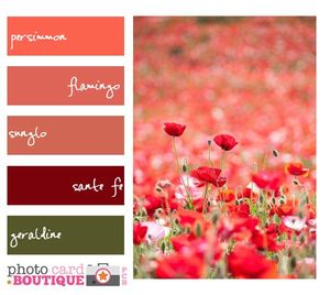3-PCB-Color-Inspiration-7-1-2011