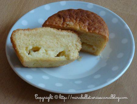 cupcake_44_tranche