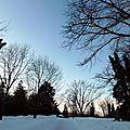 Photos d'hiver - message b - parc des moulins