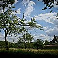 Manoir du Fay - Parc 1