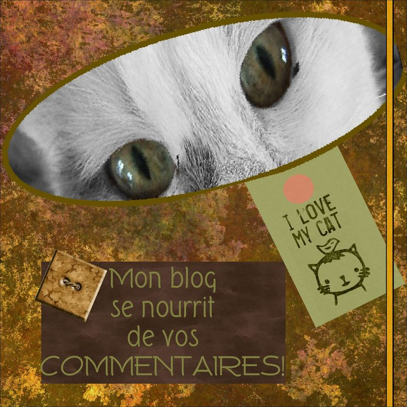Blog_commentaires