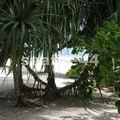 hôtel Pongwe beach_plage_60