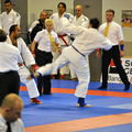 open jujistu Orlans 2011