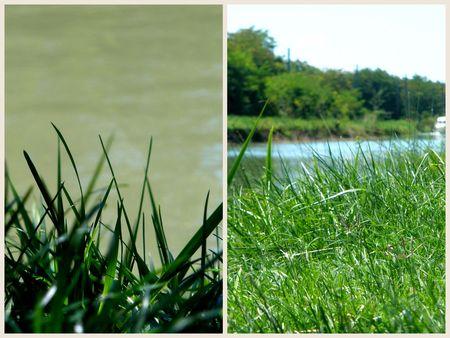 2011-08-19 aout, quiberon +Alvina