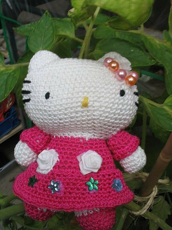 hello kitty 1