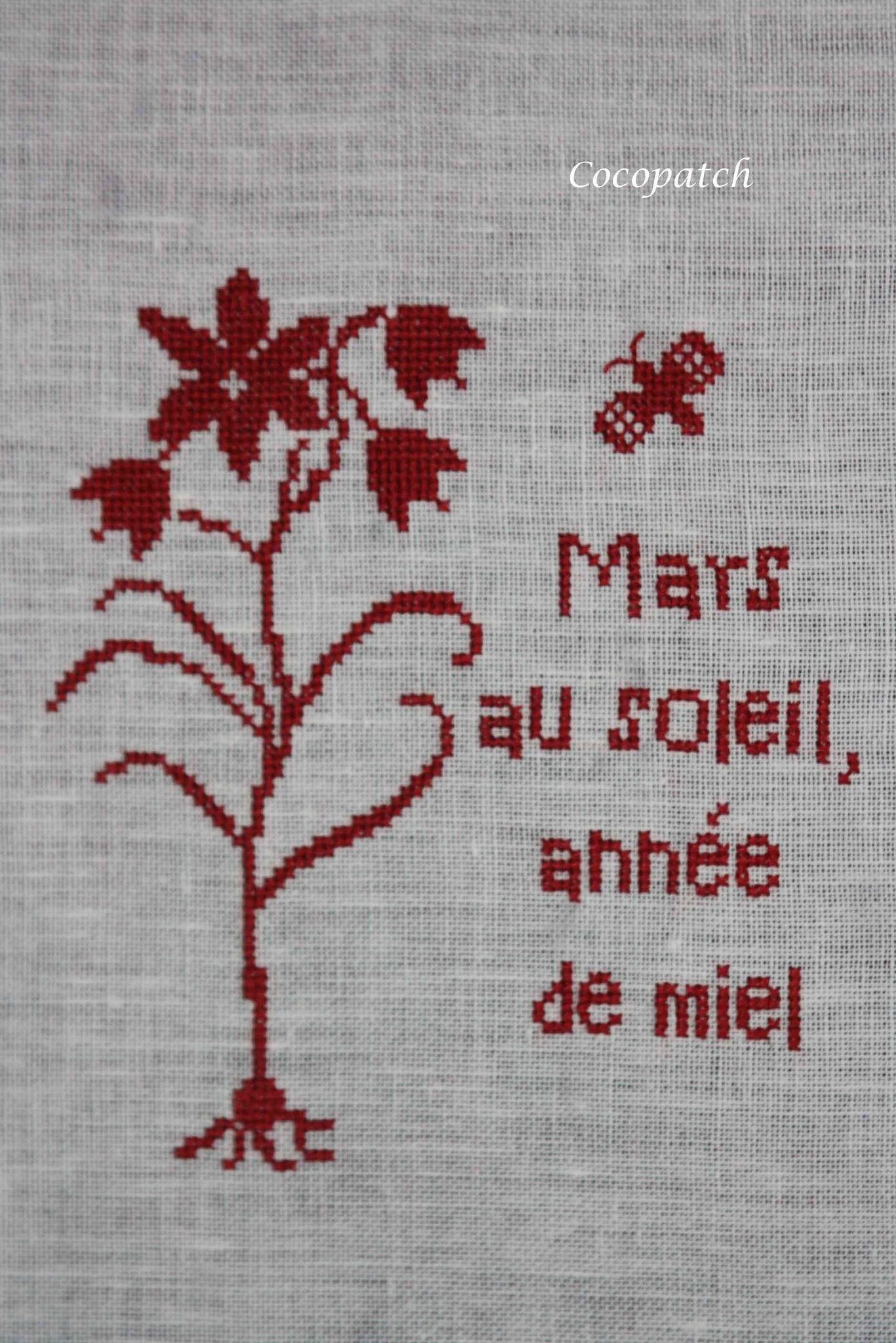 Mars brin