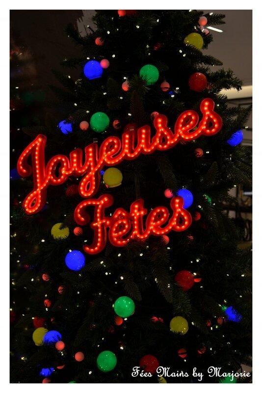 Paris Noël 2013 11