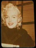 1955-new_york-mm_in_fur-tutleneck-collection_frieda_hull-1d