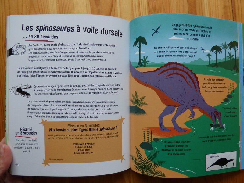 Les dinosaures en 3 minutes 2