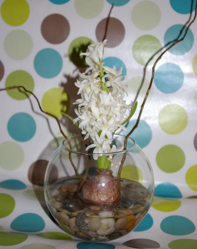 petite composition florale zen cr er la folie. Black Bedroom Furniture Sets. Home Design Ideas